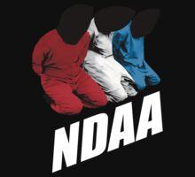 NDAA by heroian