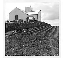 Reap What You Sow Photographic Print