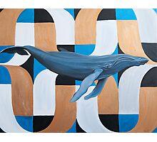 Whale Photographic Print