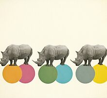Rambling Rhinos by Cassia Beck