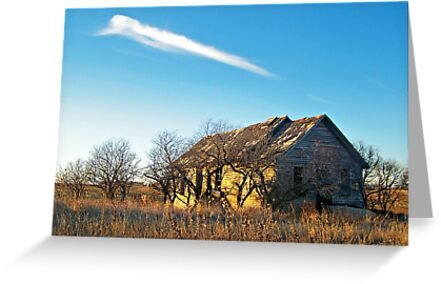 Prairie Memories by Greg Belfrage