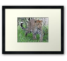 Time to go a hunting! Framed Print