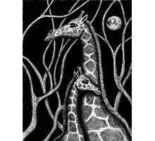 Giraffe colored pencils drawing Photographic Print