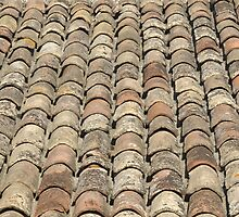 Roof Tiles, Provence, France by Marie Watt