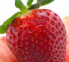 Delicious Strawberries  Sticker