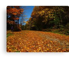 A path of leaves Canvas Print