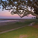 Tranquil Shornecliffe, Qld Australia by PhotoJoJo