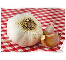 Garlic Poster