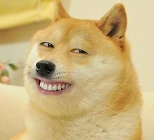 Smiling Doge  by bitek