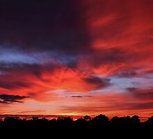 Sunrise - Hay, NSW by Mark Cooper