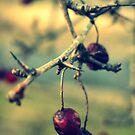 Thorny Berries by Kitsmumma
