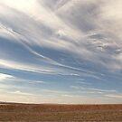 blue sky by Mustafa UZEL