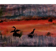 Sunrise ,heron feedng, watercolor Photographic Print