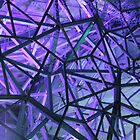 Purple Web by CKImagery