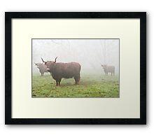Scotch Mist Framed Print
