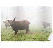 Scotch Mist Poster