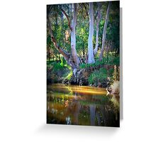 By the Waters Greeting Card