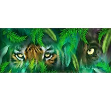 Jungle Eyes - Tiger & Panther Photographic Print