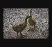Baby Geese (Goslings) One Piece - Long Sleeve