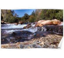 Beaver Lodge Trail Fly Fishing Area Poster
