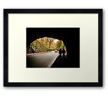 Seasonal Stroll Framed Print
