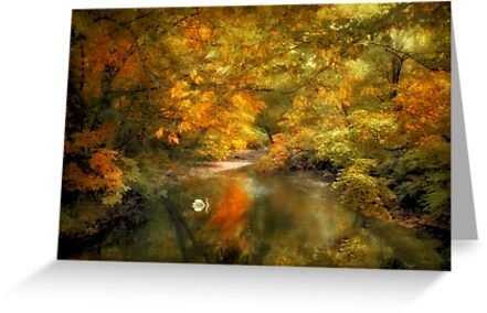 Woodland River Lights by Jessica Jenney