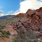 Red Rock Canyon 4 by Tracy Friesen