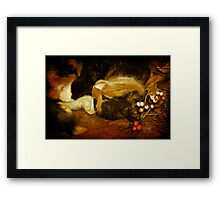 Cat Catnapping Framed Print