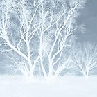 snowy ghostly image by Eric langley