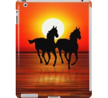 Sunset Point iPad Case/Skin