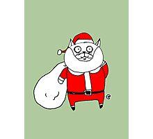 Santa Cat Photographic Print
