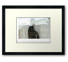 INNER CITY CAT Framed Print