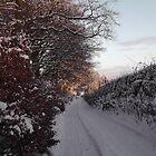 Along the way by PatisPaton