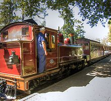 Puffing Billy, Dandenong Ranges by Roy Costigan