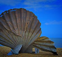 The Scallop by Chris Thaxter