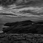 Moonlighting by ChrisMcKay