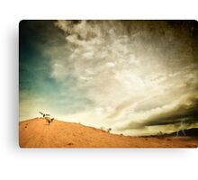Earth Angels Canvas Print