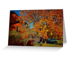 Autumn in the Neighborhood. Greeting Card