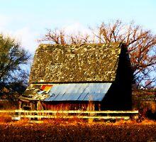 Raising The Roof...Marsing, Idaho by trueblvr