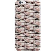 Barley Grains iPhone Case/Skin