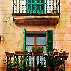 Spanish Balconies by marina63