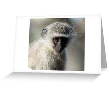 Monkey business-showing my dark side! Greeting Card