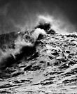 iPad Case.  Winter Waves At Pipeline 13 by Alex Preiss