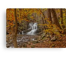 Indian Brook Waterfalls Canvas Print