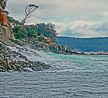 Bruny Island, Tasmania by Margaret  Hyde