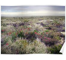 A Bleak October Day on the Heathland Poster