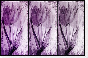 Tulips Purple by garts