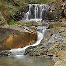 Strath Creek Feeder by phillip wise