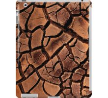 iPad Case.Mud. iPad Case/Skin