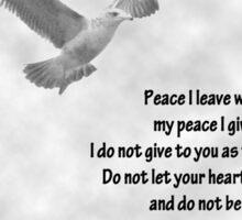 Seagull with John 14:27 Verse Sticker